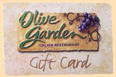 olive garden essay competition