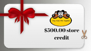 $500.00 Store Credit