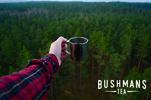 $500 Bushman's Tea Credit