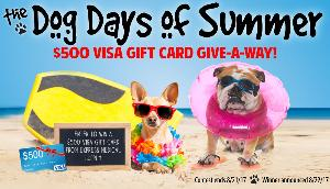 $500 Visa Gift Card Give-A-Way
