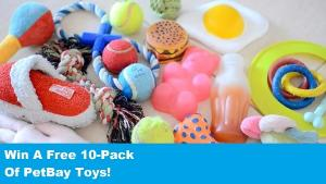 10 Pack of Dog Toys ($45)