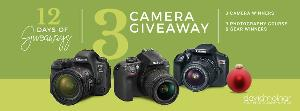 2 Days of Giveaways 3 Cameras Giveaway- lots of prizes drawn daily!