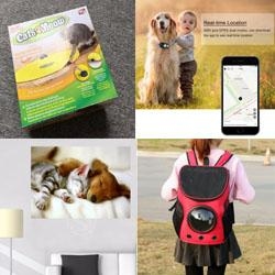 A choice of a pet carrier, electric cat toy, customized wall print, or a pet locator
