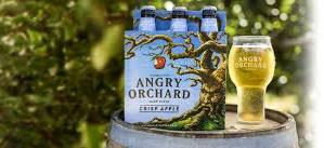 Angry Orchard Treehouse Masters