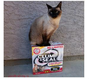 Arm & Hammer Clump & Seal Litter Prize Pk