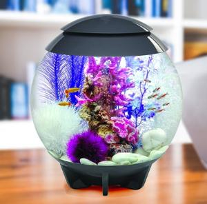 biOrb Halo 15 by OASE Aquarium Giveaway!