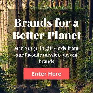 Brands For A Better Planet- Win $1,650 in amazing gift cards from mission-driven brands!!