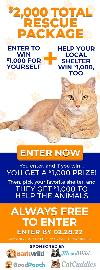 Cat Rescue Charitable Giveaway