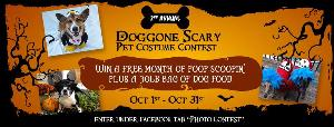 Doggone Scary Pet Costume Contest