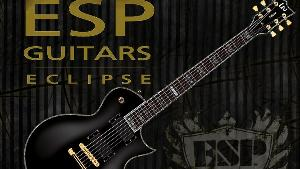 ESP LTD EC-1000 E-Guitar