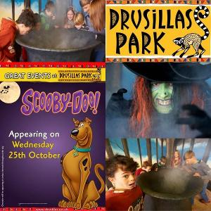 Family Ticket to Drusillas Park Giveaway!