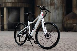 Flux Electric Bike