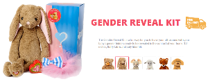 Gender Reveal Kit and Stuffed Animal