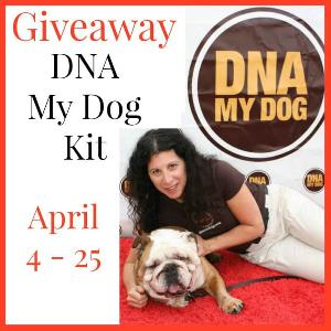 Get Your DNA My Dog Kit {Giveaway!}