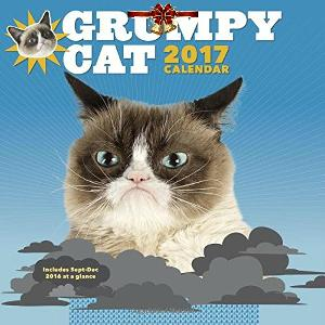 Grumpy Cat Holiday Prize Pk