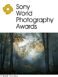 https://intercompetition.com/components/com_djclassifieds/images/item/1/1050_sony-world-photography-awards-2019_thb.png