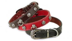 Leather Dog Collar & Leash ($50)