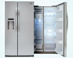 LG Stainless Steel Refrigerator ($1,600)