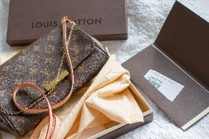 LOUIS VUITTON FAVORITE MM MONOGRAM BAG