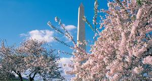 LuxeGetaways Magazine - Weekend in DC