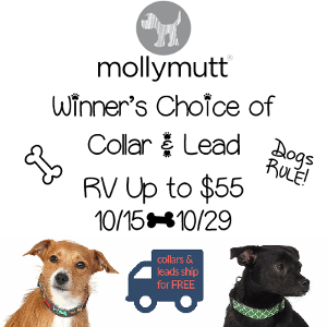 Molly Mutt Collar and Lead Giveaway