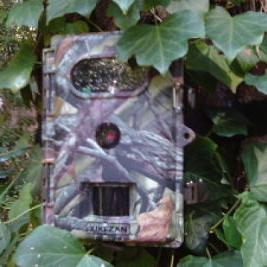 One lucky reader will win a Wildlife, Trail, & Game Camera.