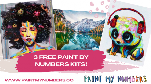 Paint My Numbers www.paintmynumbers.co