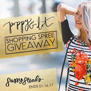 Poppy & Dot Shopping Spree Giveaway!