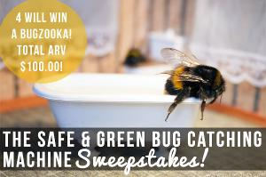 Safe & Green Bug Catching Machine Giveaway