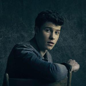 Contest win 2 tickets to a shawn mendes concert meet greet win 2 tickets to a shawn mendes concert meet greet 250 gift card autographed poster 670 m4hsunfo