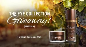 The Eye Collection Cosmetics Giveaway