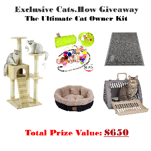 The Ultimate Cat Owner Kit Giveaway – Five Kits - Five Winners