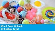 10 Pack of Dog Toys