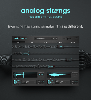 Analog Strings ($199)
