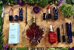 Estee Lauder x Canada 150 Set (Beauty Bundle + Maple Syrup)