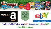 Win a $50 Amazon or eBay Gift Card