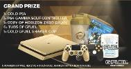 Win a Gold PS4