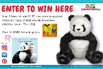 win this gorgeous Panda & a wonderful childrens book