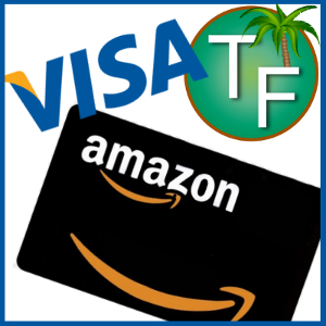 Travefave's Contest Prize--Visa or Amazon e-Gift Card