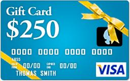 WIN: 1 of 5 $250 Visa Gift Cards!