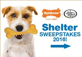 WIN: 300 in Nylabone & Four Paws products + $1,500 in Nylabone chew toys for a shelter