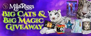Win a blanket, Magic 8 Ball, crystal pendant, candle holder, journal, white tiger plush, and $25 gift card.