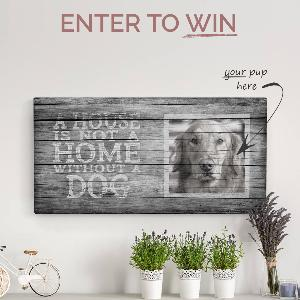 Win a canvas with your dog