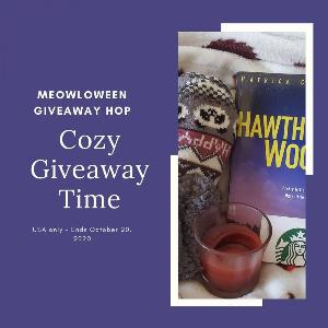 Win A Cozy Blanket ,A $10 Starbucks Gift Card, Fuzzy Slipper Socks ,A Good Book to get cozy with, & A Fall themed candle!