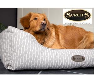 Win a Scruffs Siesta pet bed!