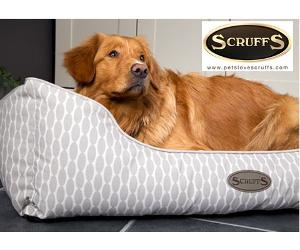 Win a Scruffs Siesta pet bed!!