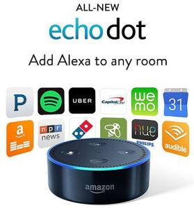 WIN: Amazon Echo Dot