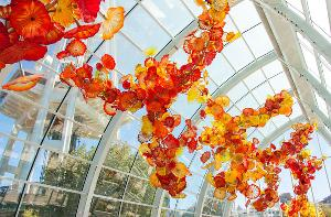 Win an Art Immersion Trip For 2 To Seattle
