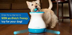 WIN an iFetch Frenzy Interactive Dog Toy! 8 Winners!