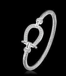 WIN: Horseshoe Bangle Bracelet